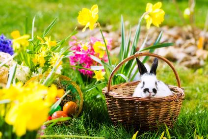 Linktipp: Joyeuses Pâques!