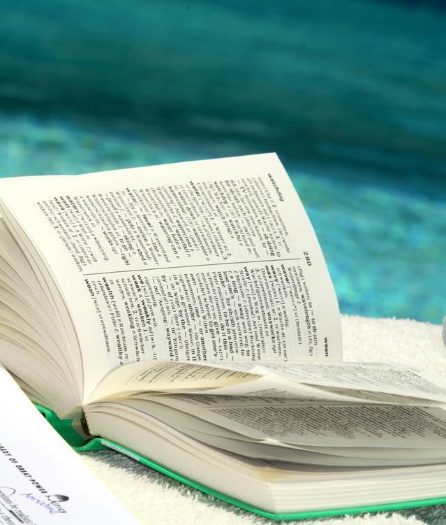 Neue Sprachen-App: Fremdsprachen lernen mit Lingibli