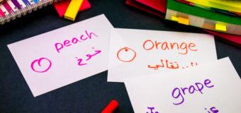 Großer Andrang: Fremdsprachenkurse für Flüchtlingshelfer