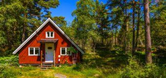 Die Sprachen unserer Nachbarn: Schwedisch